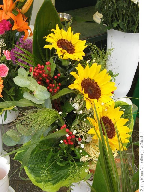 цветы19