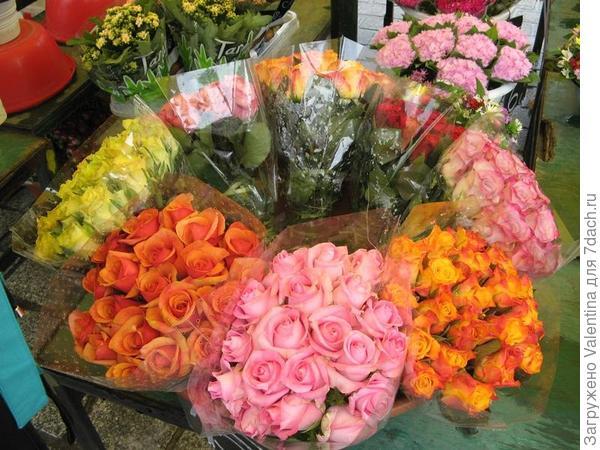 цветы3