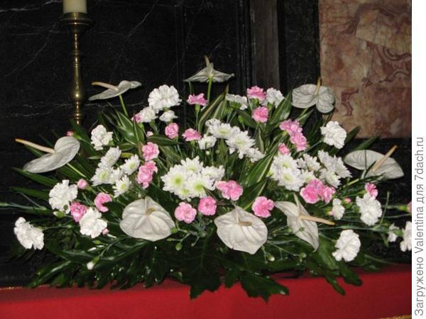 цветы20