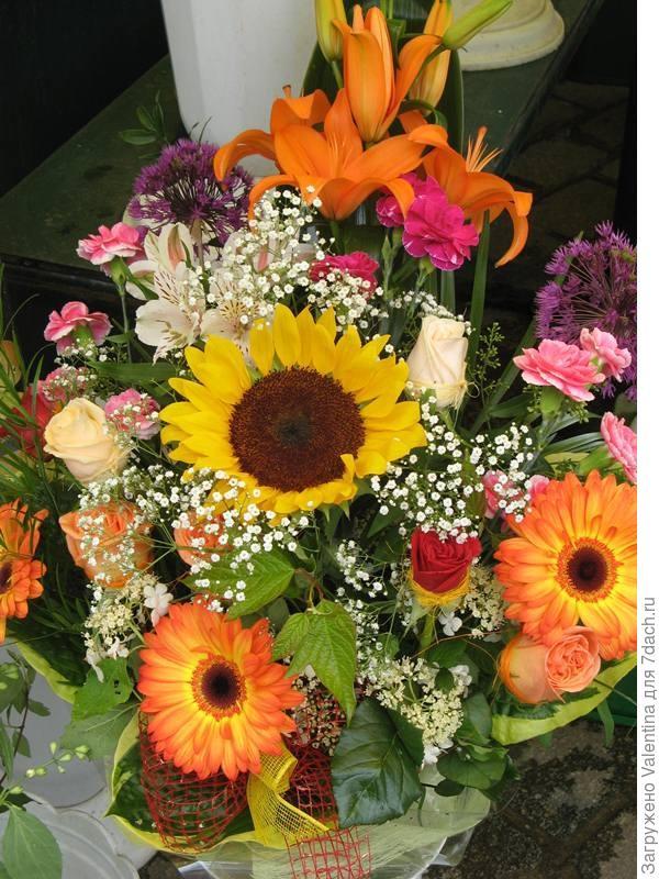 цветы18