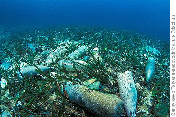 пластиковые бутылки на дне моря, фото с сайта mumbaitalkies.in