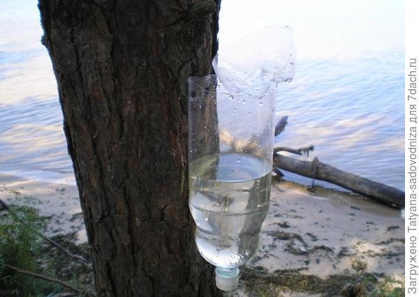 умывальник из пластиковой бутылки, фото с сайта funnybottle.ru