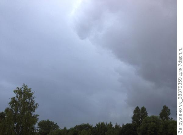Кажется дождь начинается...