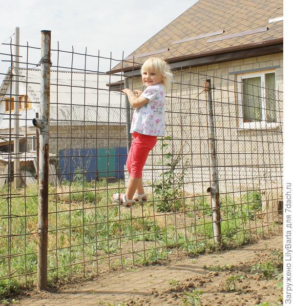 ребенок на заборе