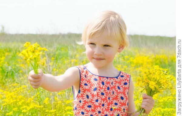 ребенок с букетом полевых цветов