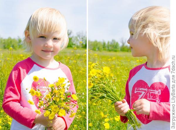 весна в цветущих полях