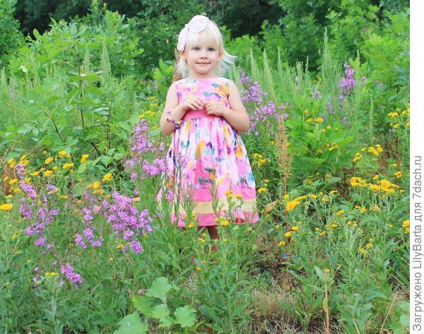 цветы в полях у ериков