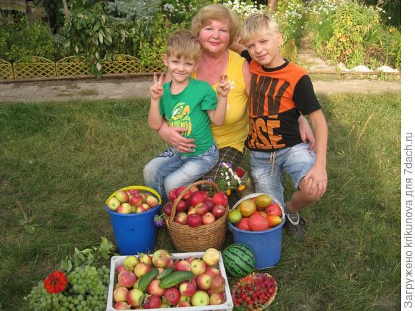 Собираем в августе урожай плодов, очень много всем радости после трудов!!