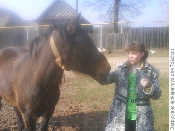 с лошадкой
