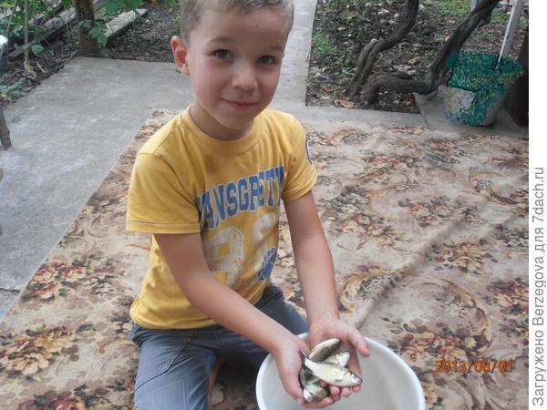 Помощник.  ((Рустам, 5 лет.