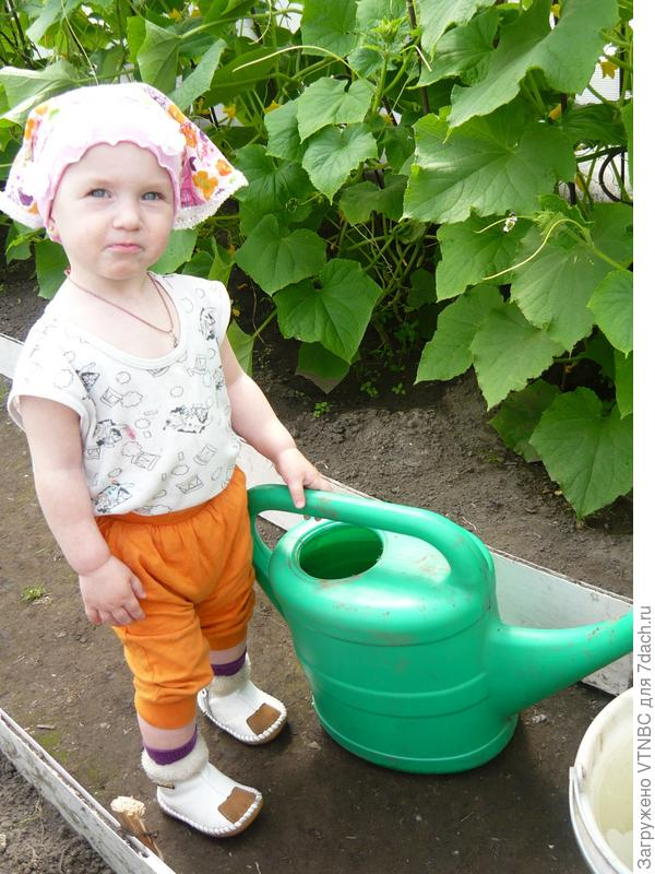 люблю я маме помогать-огуречик поливать)))