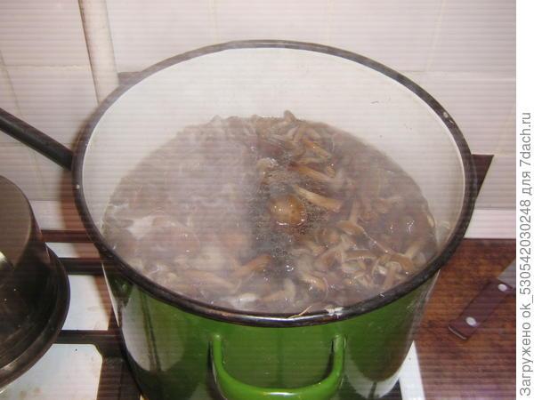 Готовы грибочки.