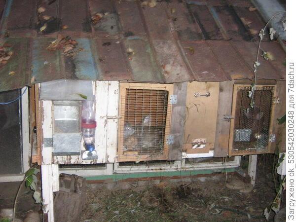 Клетка для крольчихи.