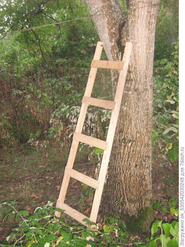 Приставная лестница.