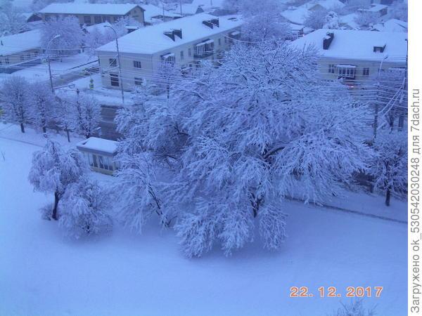 Предновогодний снег