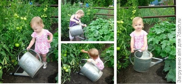 Наш щедрый урожай!