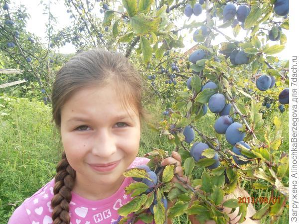 Утро.   ((Алина, 9 лет.