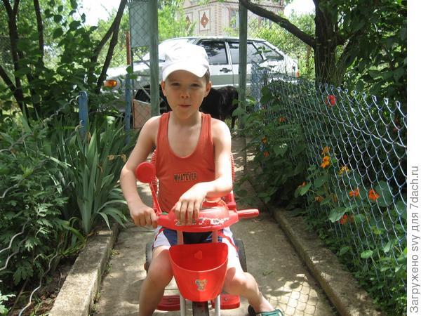 Толя и Ваня велосипедисты.