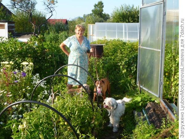 Огородная инспекция