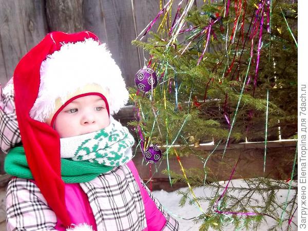 Доченька и новогодняя красавица .