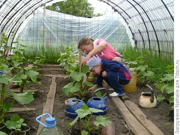 Школа юного агронома