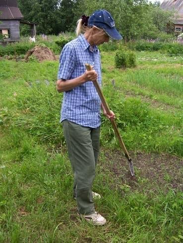 Дача,огород,земля и конечно зелень.