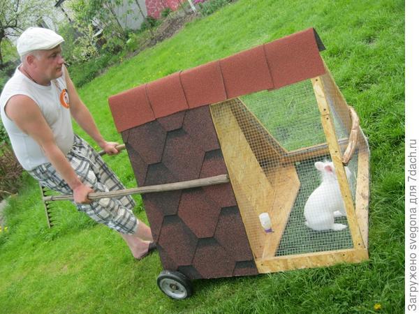 Как правильно посадить газонную траву технология работ от
