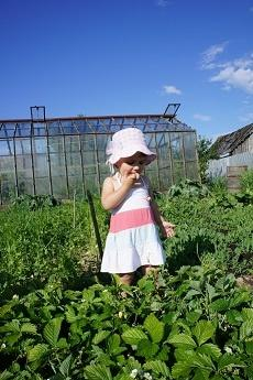 Летний день на даче глазами ребенка... ,)