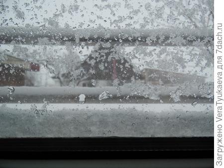 Оконное стекло снегом залеплено.