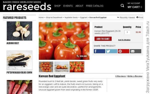 Семена баклажана Корейский красный продаются на иностранном сайте.