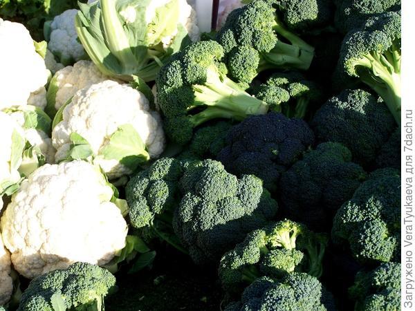 Головки цветной капусты и брокколи.
