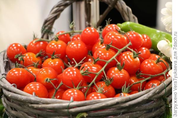 Урожай помидоров.