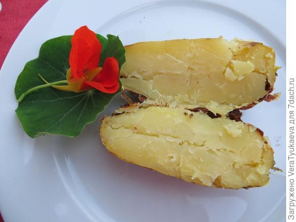 Картофель. С цветком настурции.