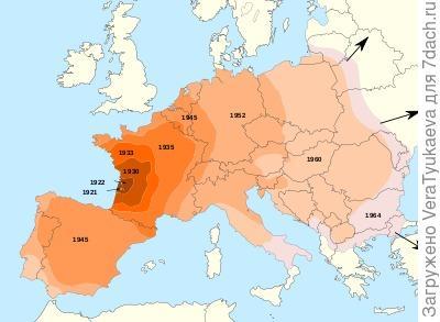 Карта распространения колорадского жука в Европе. https://fr.wikipedia.org/wiki/Doryphore