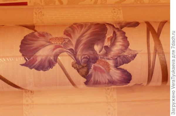 Вот такие ирисы будут красоваться на стене в моем доме.
