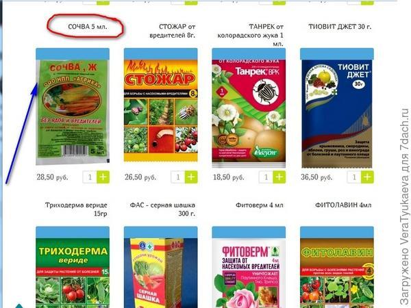 Страница интернет-магазина.