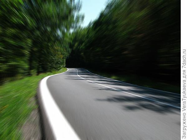 Идеальных дорог в советском лесу не было.