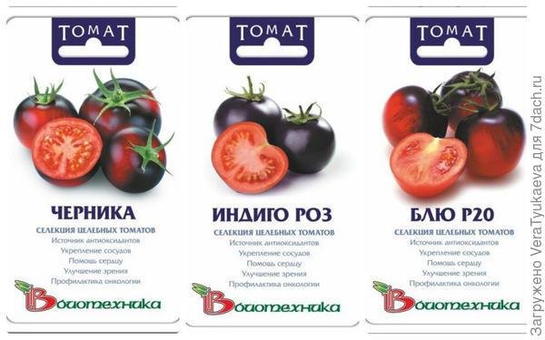 Фиолетовые помидоры.