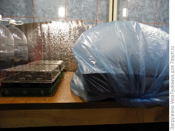 Так закрыты кассеты кожухом и так стоят на полке стеллажа для рассады.