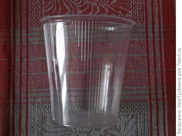Стакан пластиковый прозрачный.