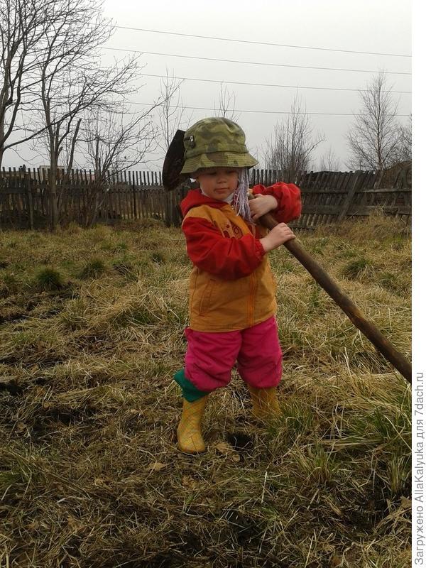 Дочка Алиса с большим удовольствием помогает нам на огороде.