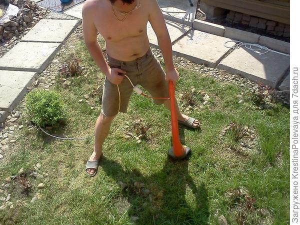 Ювелирная работа мужа - стрижка газона в розарии