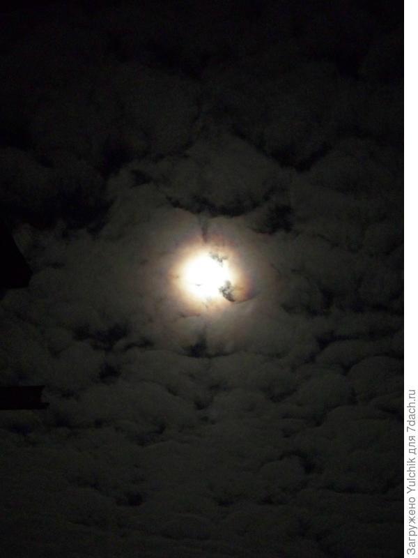 Ночное небо над дачей