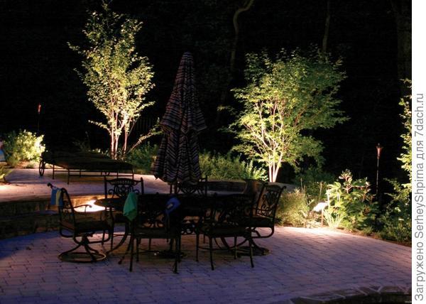 Подсветка деревьев.