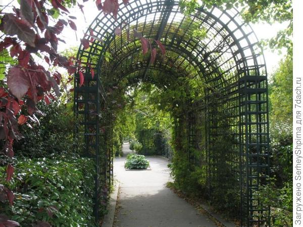 Озелененная арка.