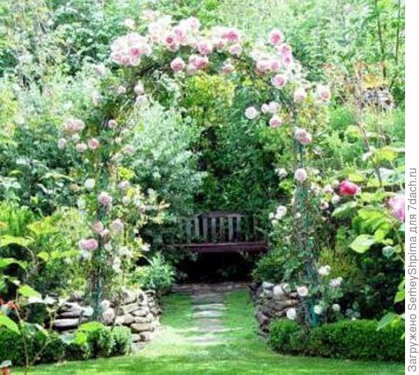 Арка с розами.