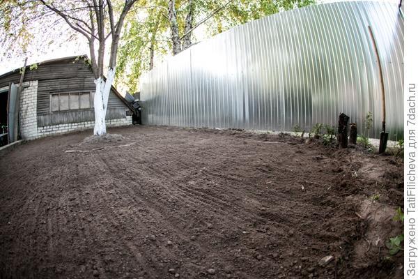 Мой первый газон