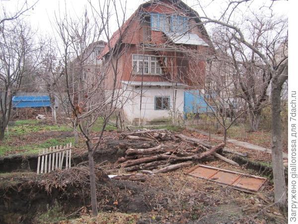 вид дома через просветы деревьев