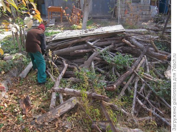огромное количество дров