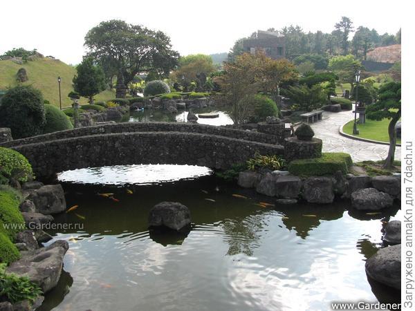 Парк Бонсай Энергичный Сад в Южной Корее